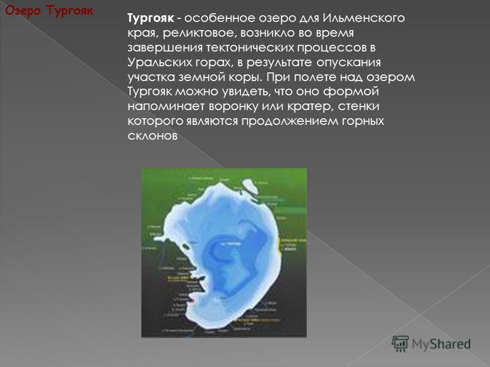 Озеро Тургояк Тургояк - особенное озеро для Ильменского края, реликтовое, возникло во время завершения тектонических процессов в Уральских горах, в результате опускания участка земной коры. При полете над озером Тургояк можно увидеть, что оно формой
