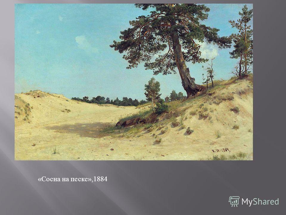 «Сосна на песке»,1884