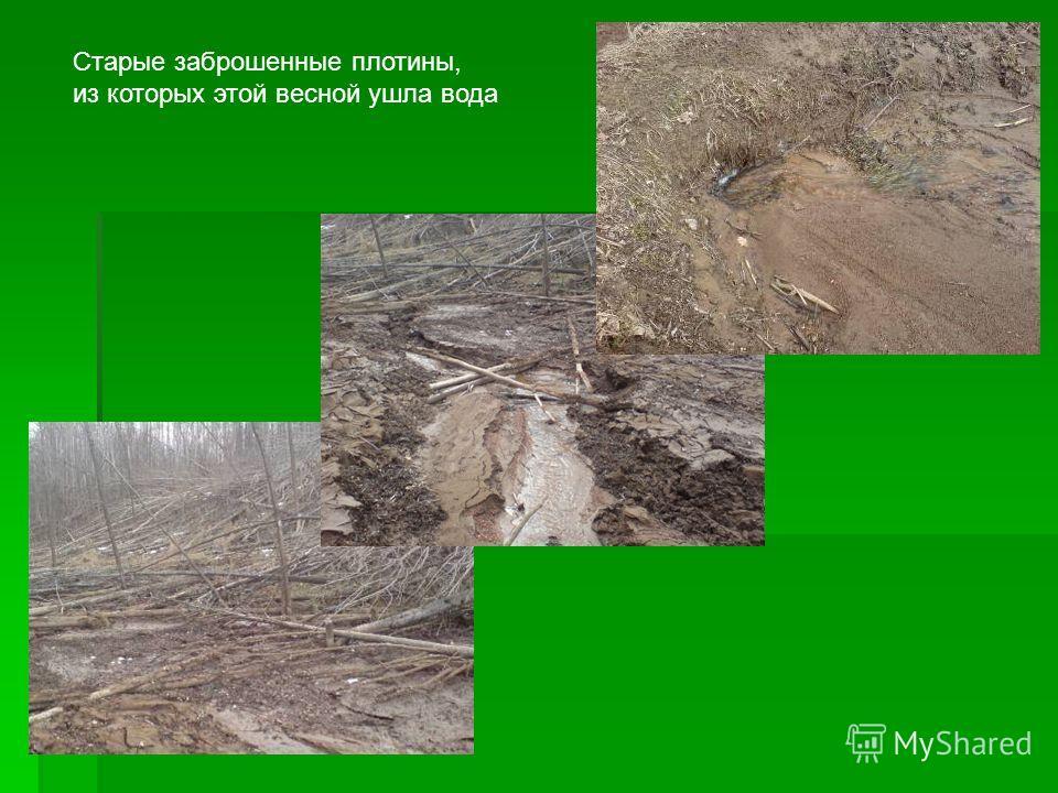 Старые заброшенные плотины, из которых этой весной ушла вода