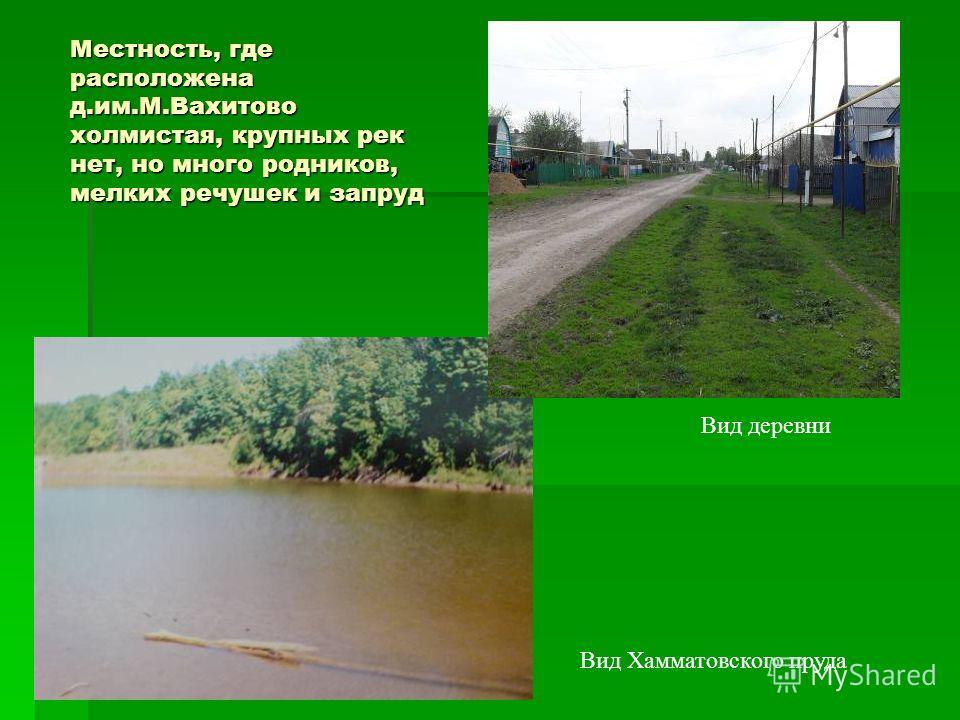 Местность, где расположена д.им.М.Вахитово холмистая, крупных рек нет, но много родников, мелких речушек и запруд Вид деревни Вид Хамматовского пруда