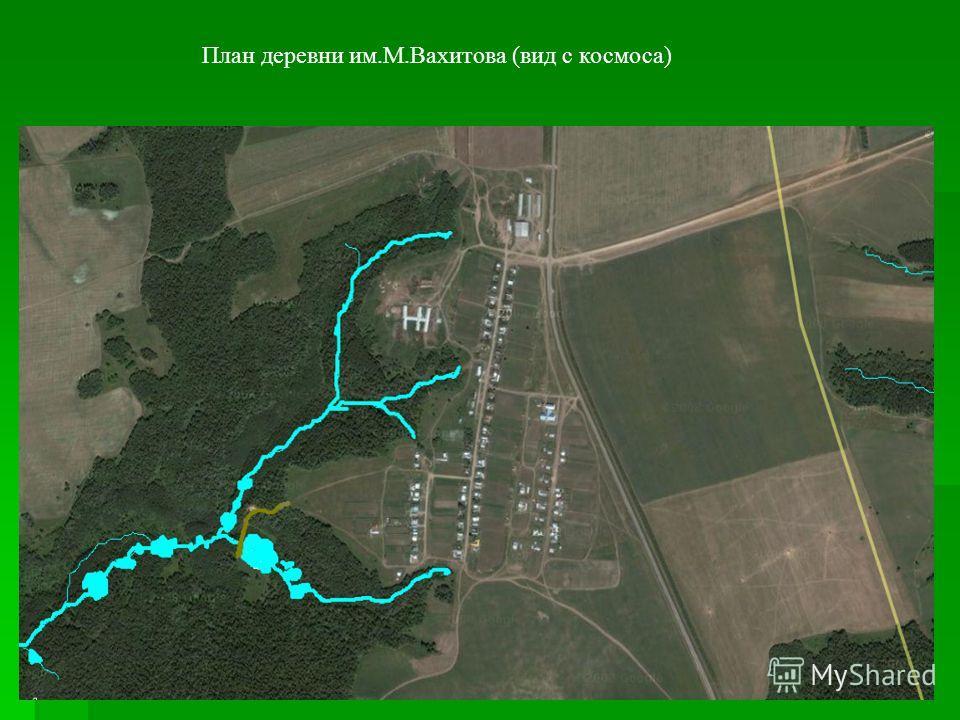 План деревни им.М.Вахитова (вид с космоса)