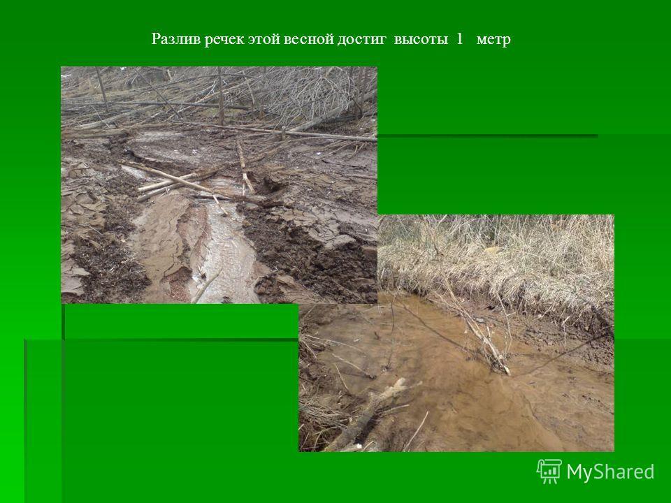 Разлив речек этой весной достиг высоты 1 метр