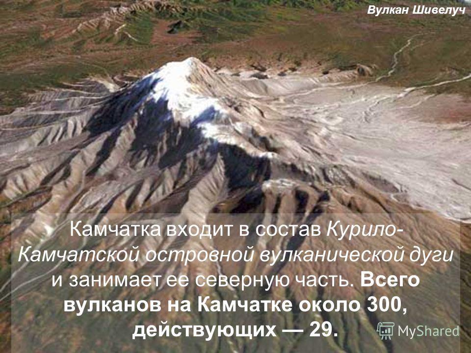 Камчатка входит в состав Курило- Камчатской островной вулканической дуги и занимает ее северную часть. Всего вулканов на Камчатке около 300, действующих 29. Вулкан Шивелуч