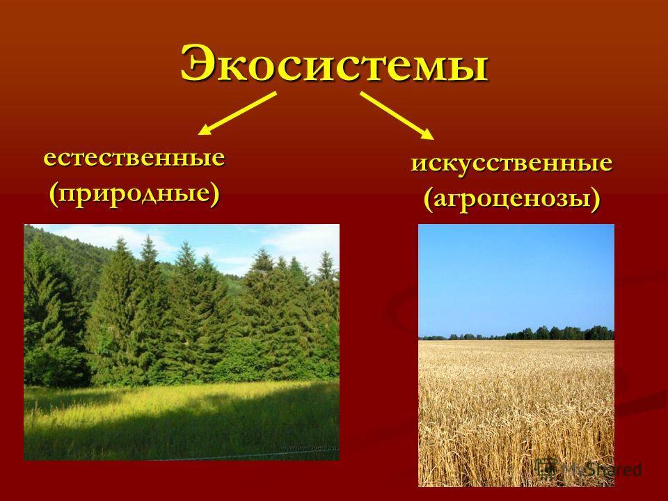 Экосистемы естественные(природные) искусственные(агроценозы)