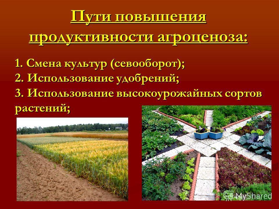Пути повышения продуктивности агроценоза: 1. Смена культур (севооборот); 2. Использование удобрений; 3. Использование высокоурожайных сортов растений;