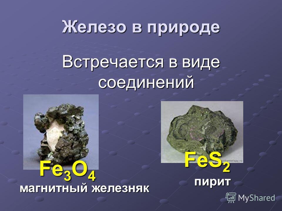 Железо в природе Встречается в виде соединений магнитный железняк пирит Fe 3 O 4 Fe 3 O 4 FeS 2 FeS 2