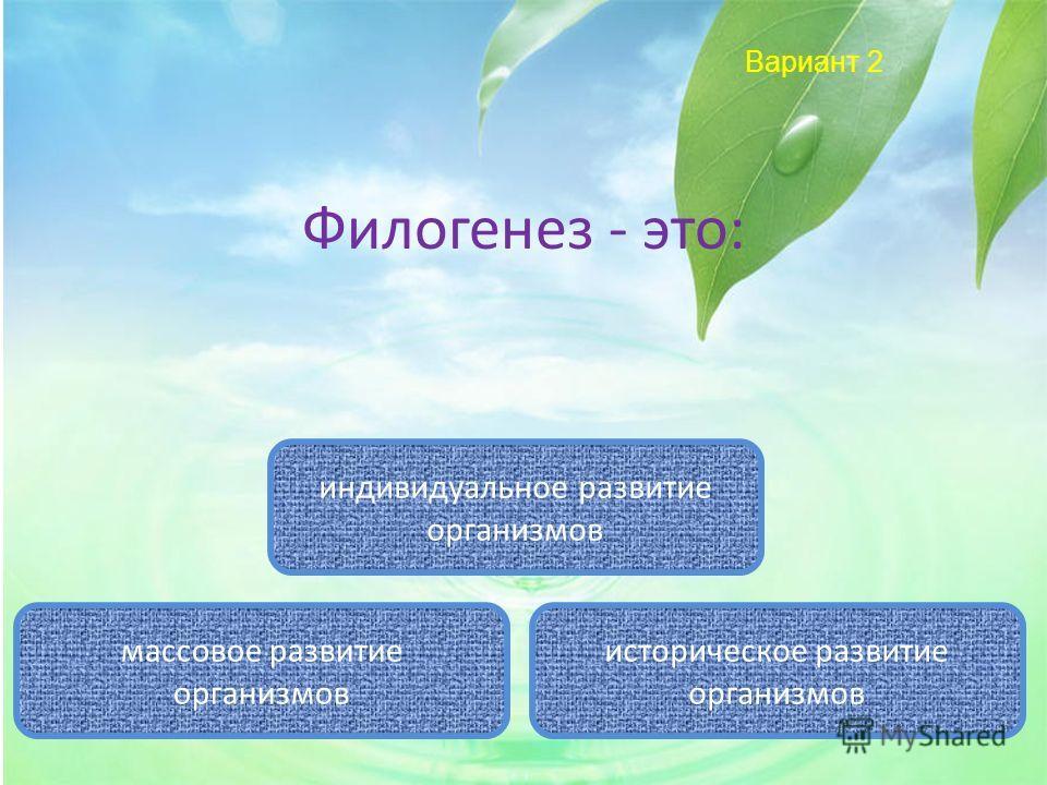 Вариант 2 Филогенез - это: историческое развитие организмов индивидуальное развитие организмов массовое развитие организмов
