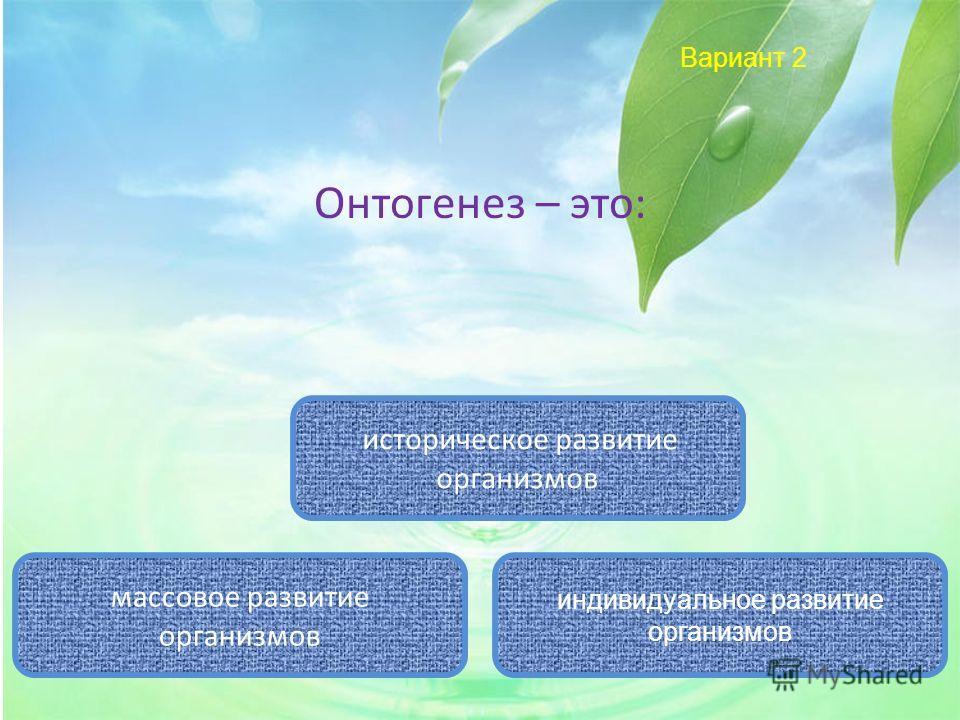 Вариант 2 Онтогенез – это: индивидуальное развитие организмов историческое развитие организмов массовое развитие организмов