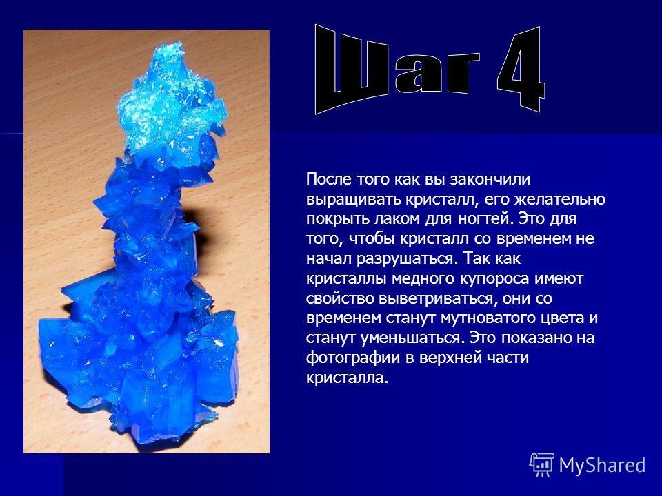 После того как вы закончили выращивать кристалл, его желательно покрыть лаком для ногтей. Это для того, чтобы кристалл со временем не начал разрушаться. Так как кристаллы медного купороса имеют свойство выветриваться, они со временем станут мутновато