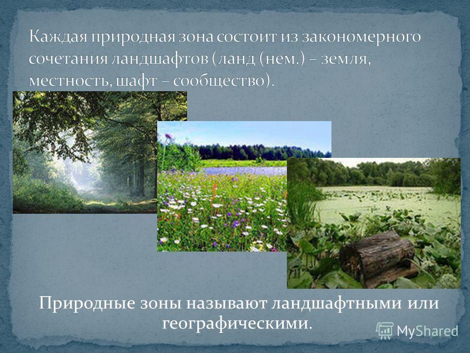 Природные зоны называют ландшафтными или географическими.