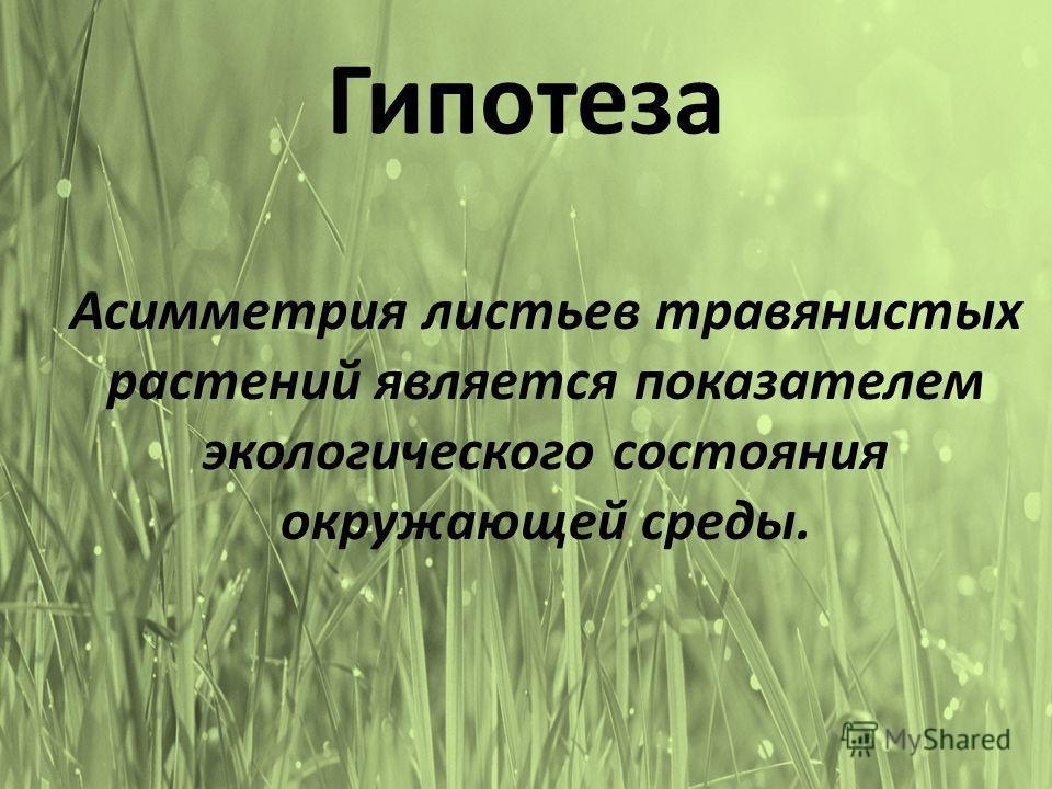 Гипотеза Асимметрия листьев травянистых растений является показателем экологического состояния окружающей среды.