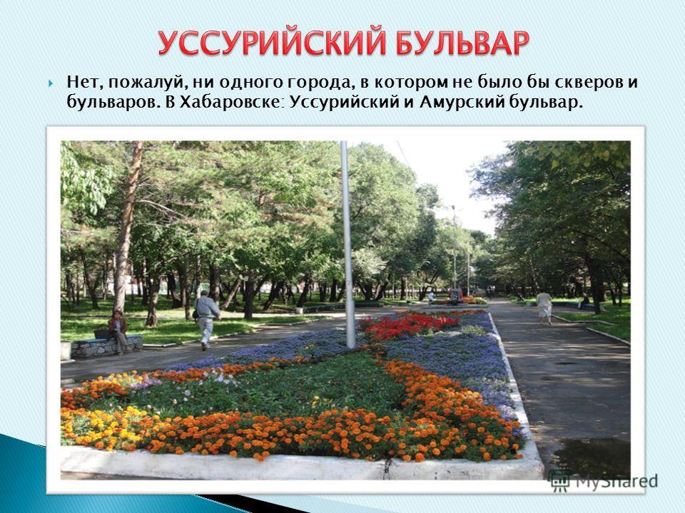 Нет, пожалуй, ни одного города, в котором не было бы скверов и бульваров. В Хабаровске: Уссурийский и Амурский бульвар.