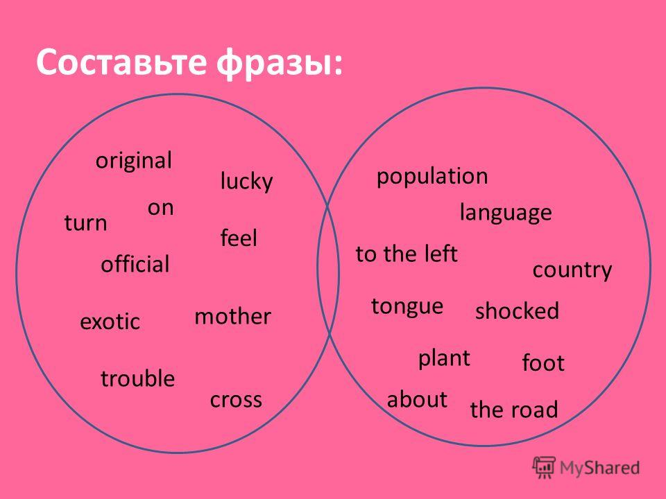 Составьте фразы: lucky country exotic plant official language feel shocked cross the road turn to the left mother tongue original population on foot trouble about