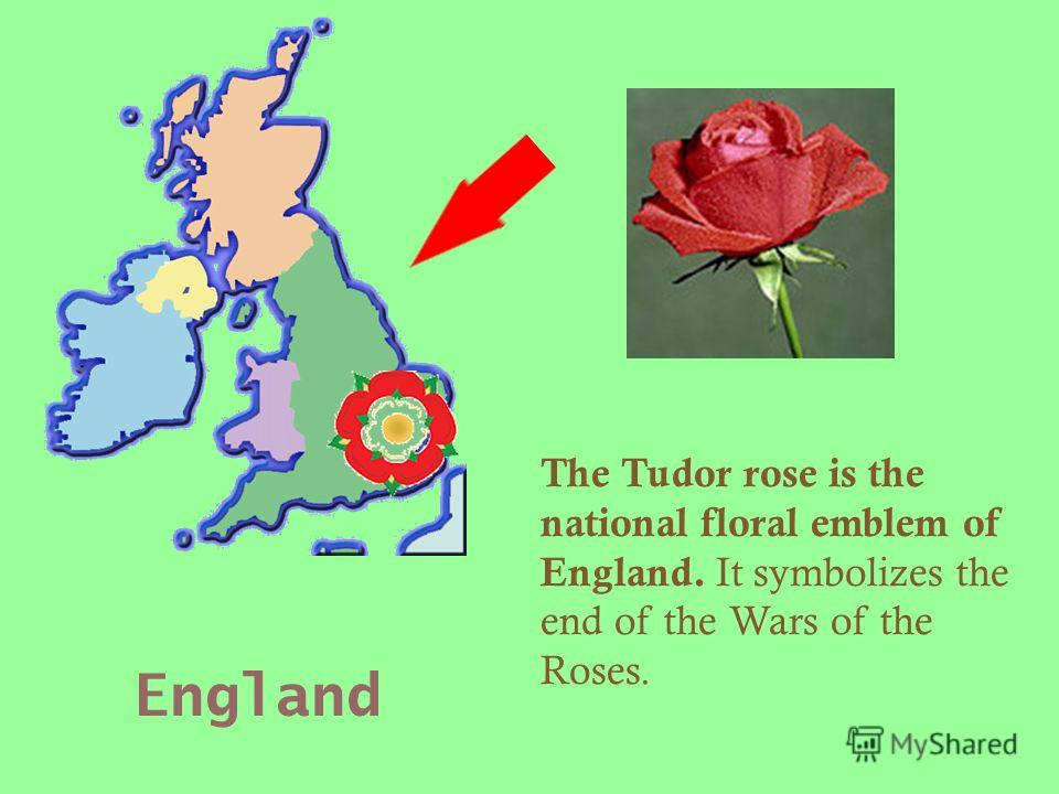 England The Tudor rose is the national floral emblem of England. It symbolizes the end of the Wars of the Roses.