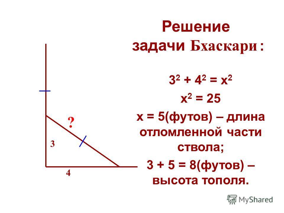 Решение задачи Бхаскари : 3 2 + 4 2 = x 2 х 2 = 25 х = 5(футов) – длина отломленной части ствола; 3 + 5 = 8(футов) – высота тополя. 3 4 ?