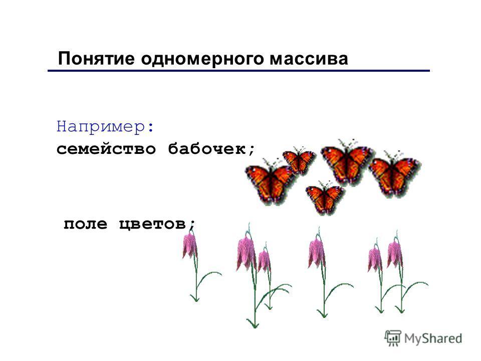 Например: семейство бабочек; Понятие одномерного массива поле цветов;