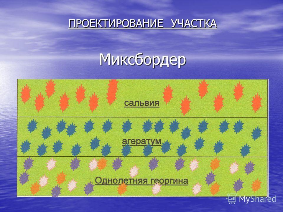 ПРОЕКТИРОВАНИЕ УЧАСТКА Миксбордер