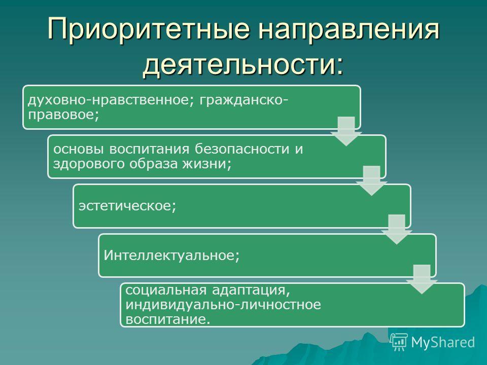 Приоритетные направления деятельности: духовно-нравственное; гражданско- правовое; основы воспитания безопасности и здорового образа жизни; эстетическое;Интеллектуальное; социальная адаптация, индивидуально-личностное воспитание.