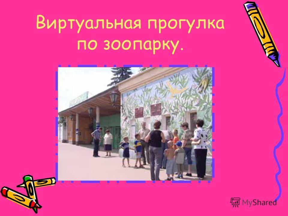 Директор Казанского зооботсада Альберт Робертович Мударисов только с виду такой неприступный и важный в своей импозантности. Вообще же это очень душевный, гостеприимный и веселый человек