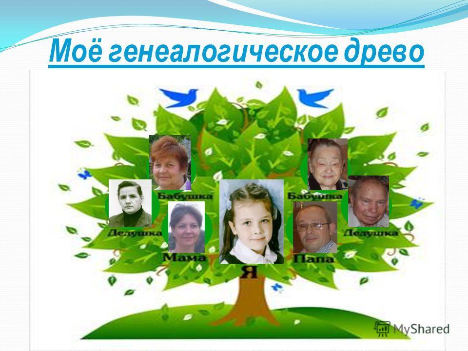 Моё генеалогическое древо