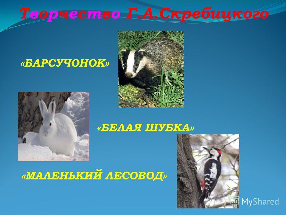Творчество Г.А.Скребицкого «ПУШОК» «КОТ ИВАНЫЧ» «ДЖЕК»