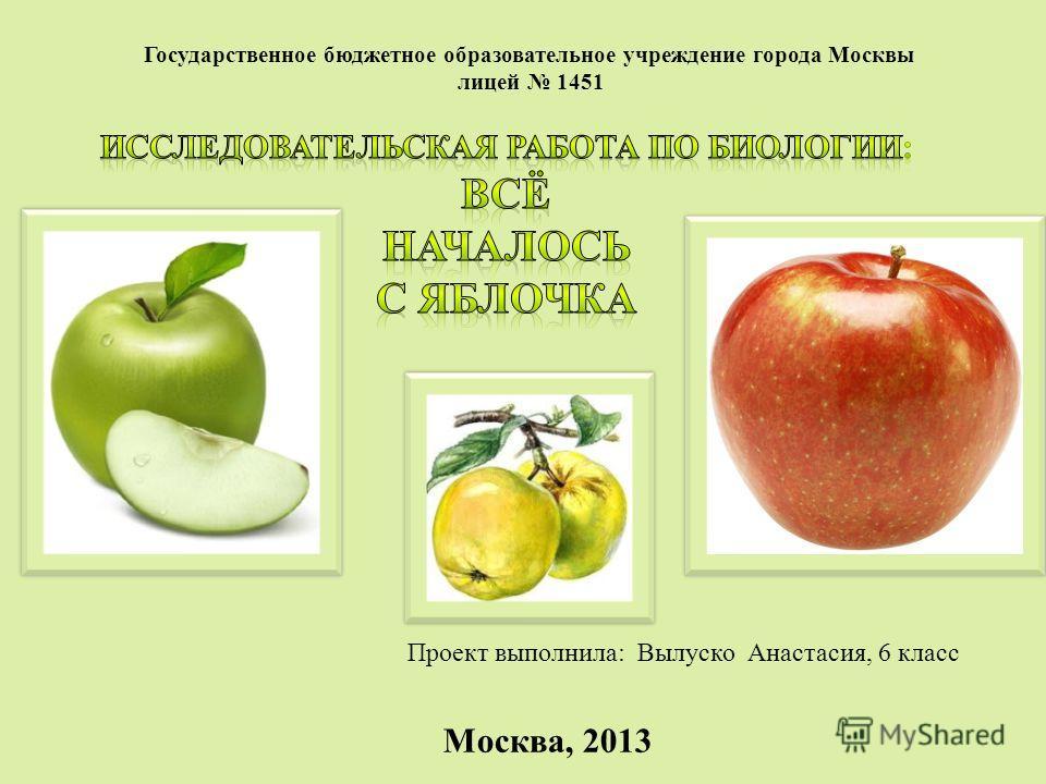 Государственное бюджетное образовательное учреждение города Москвы лицей 1451 Проект выполнила: Вылуско Анастасия, 6 класс Москва, 2013