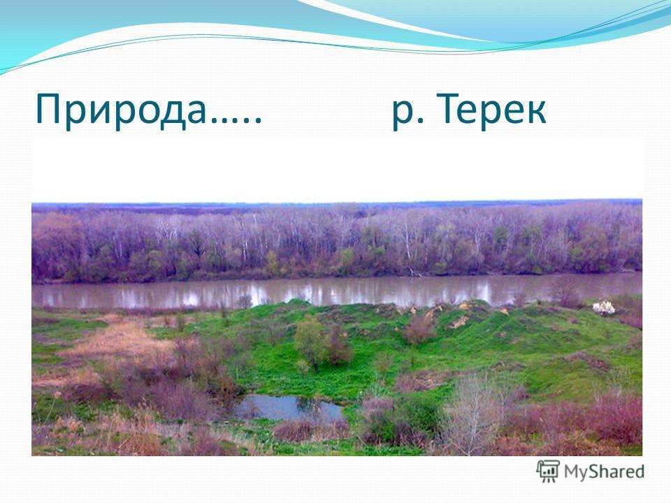 Природа….. р. Терек