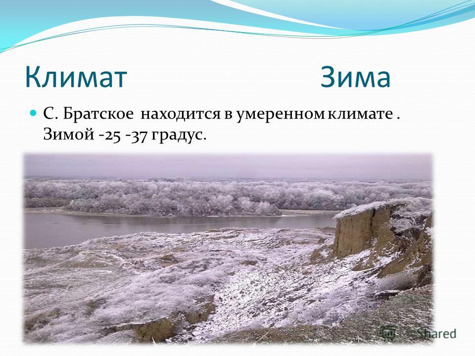 Климат Зима С. Братское находится в умеренном климате. Зимой -25 -37 градус.