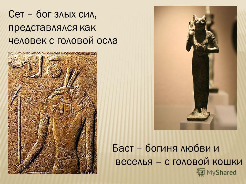 Сет – бог злых сил, представлялся как человек с головой осла Баст – богиня любви и веселья – с головой кошки