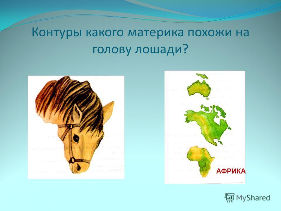 Контуры какого материка похожи на голову лошади? АФРИКА