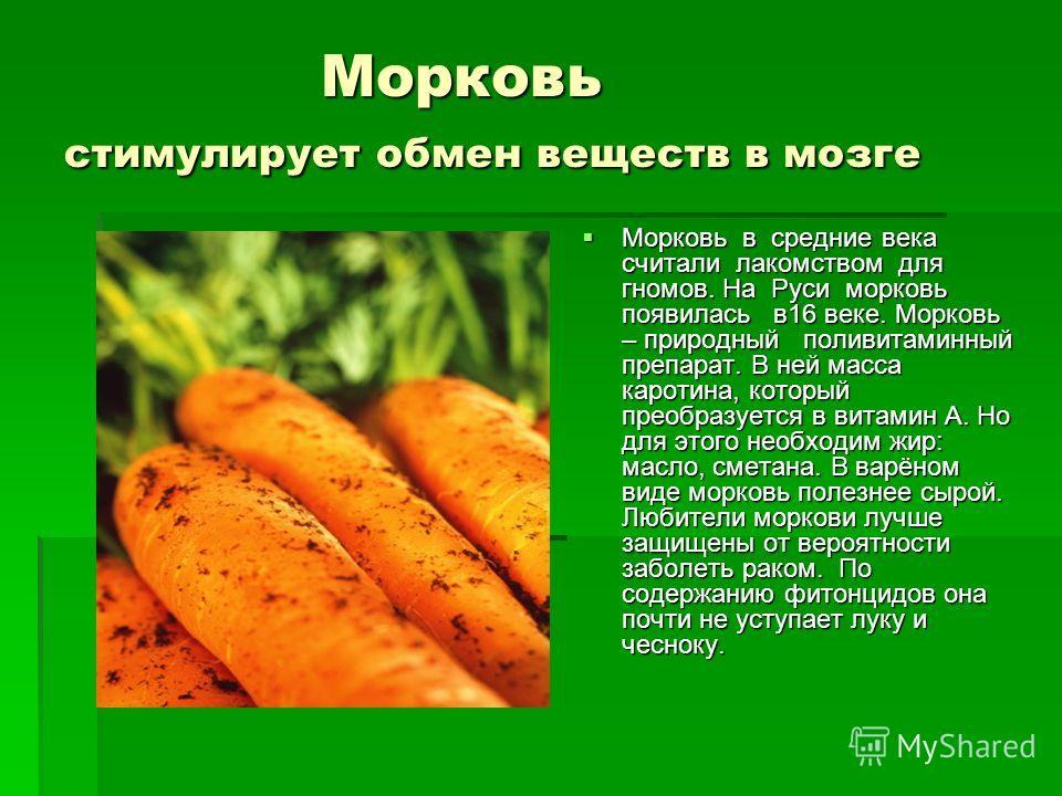 Морковь стимулирует обмен веществ в мозге Морковь стимулирует обмен веществ в мозге Морковь в средние века считали лакомством для гномов. На Руси морковь появилась в16 веке. Морковь – природный поливитаминный препарат. В ней масса каротина, который п