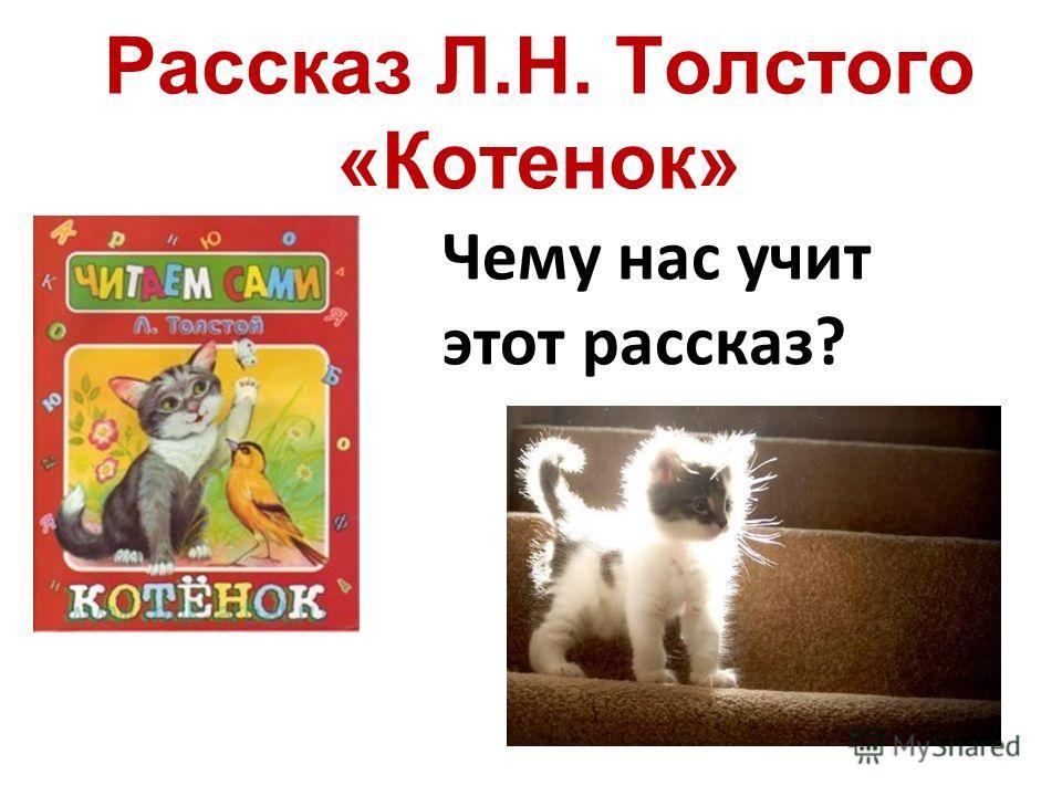 Рассказ Л.Н. Толстого «Котенок» Чему нас учит этот рассказ?