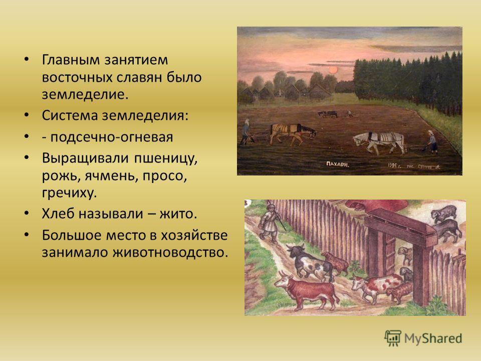 Главным занятием восточных славян было земледелие. Система земледелия: - подсечно-огневая Выращивали пшеницу, рожь, ячмень, просо, гречиху. Хлеб называли – жито. Большое место в хозяйстве занимало животноводство.