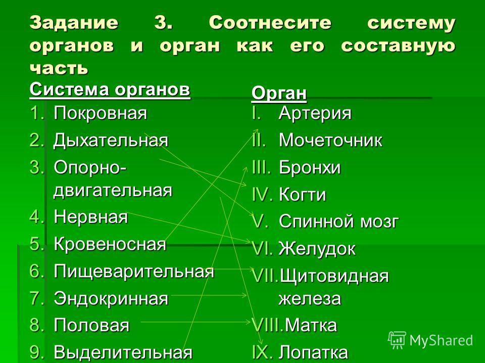 Задание 3. Соотнесите систему органов и орган как его составную часть Система органов 1.Покровная 2.Дыхательная 3.Опорно- двигательная 4.Нервная 5.Кровеносная 6.Пищеварительная 7.Эндокринная 8.Половая 9.Выделительная Орган I.Артерия II.Мочеточник III
