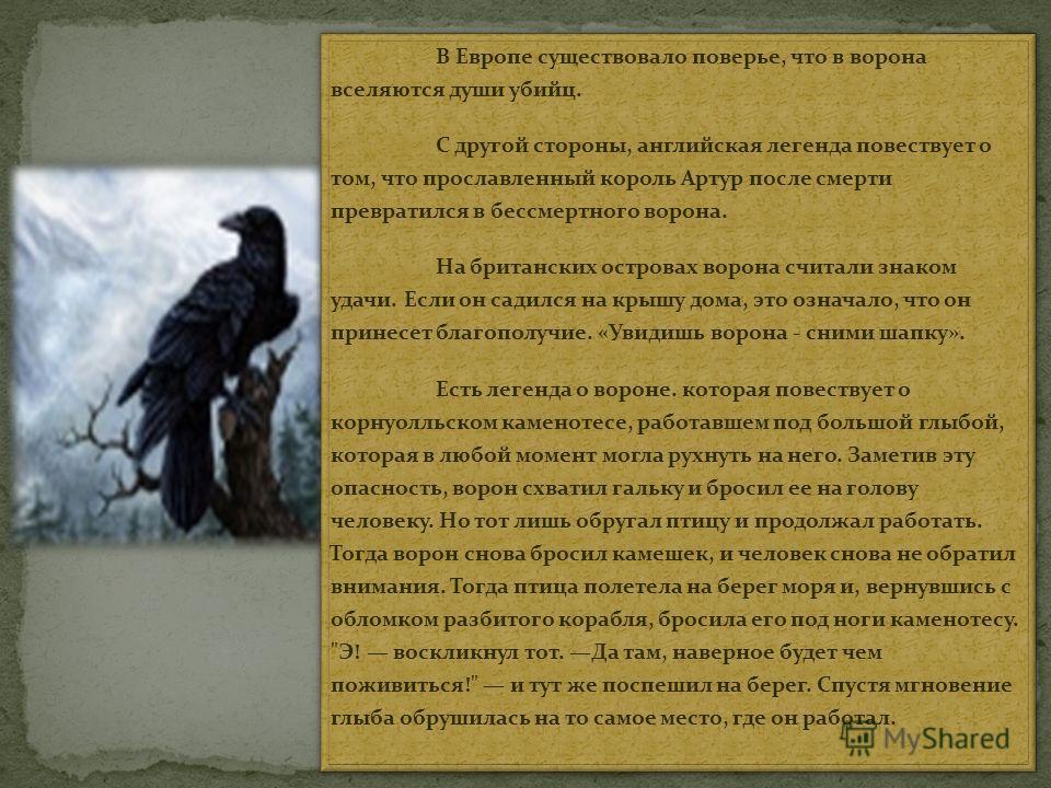 В Европе существовало поверье, что в ворона вселяются души убийц. С другой стороны, английская легенда повествует о том, что прославленный король Артур после смерти превратился в бессмертного ворона. На британских островах ворона считали знаком удачи