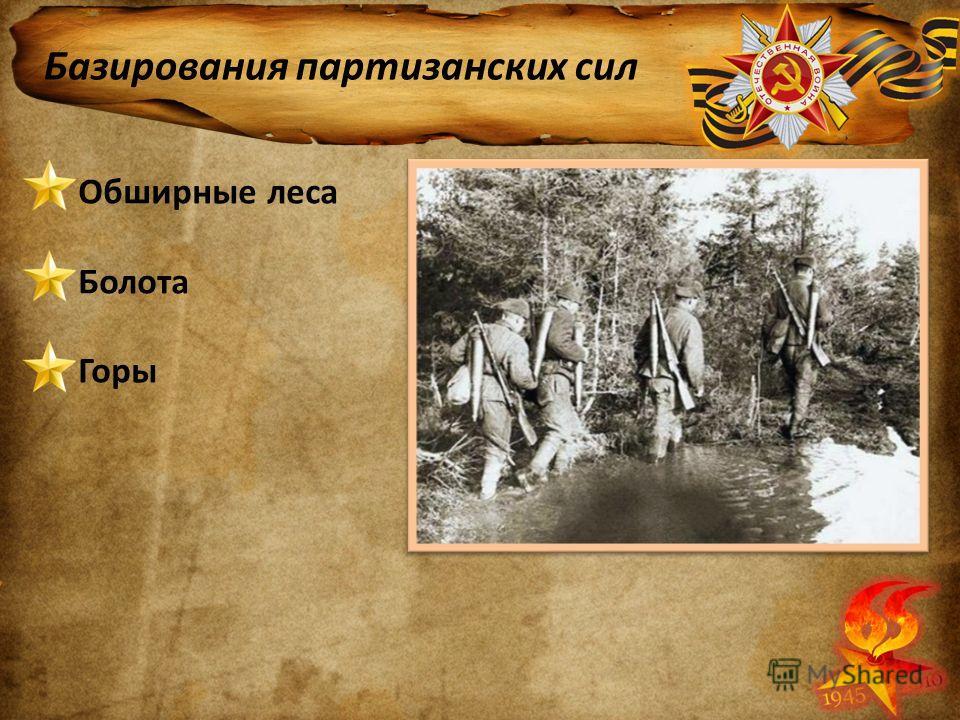 Базирования партизанских сил Обширные леса Болота Горы