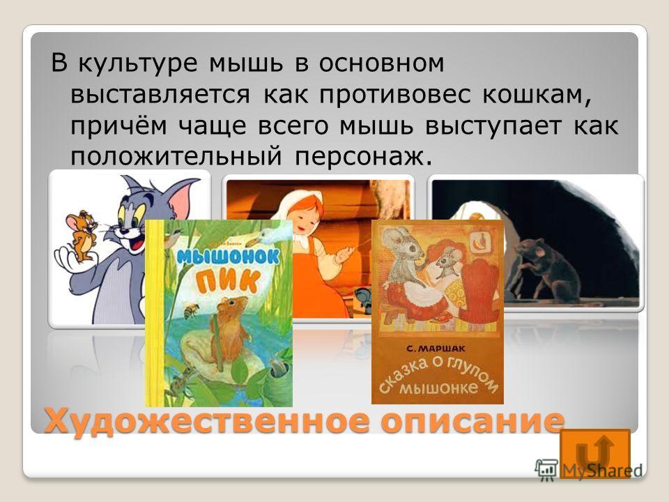 Художественное описание В культуре мышь в основном выставляется как противовес кошкам, причём чаще всего мышь выступает как положительный персонаж.