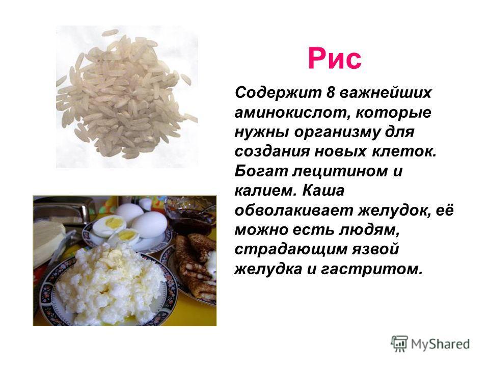 Рис Содержит 8 важнейших аминокислот, которые нужны организму для создания новых клеток. Богат лецитином и калием. Каша обволакивает желудок, её можно есть людям, страдающим язвой желудка и гастритом.
