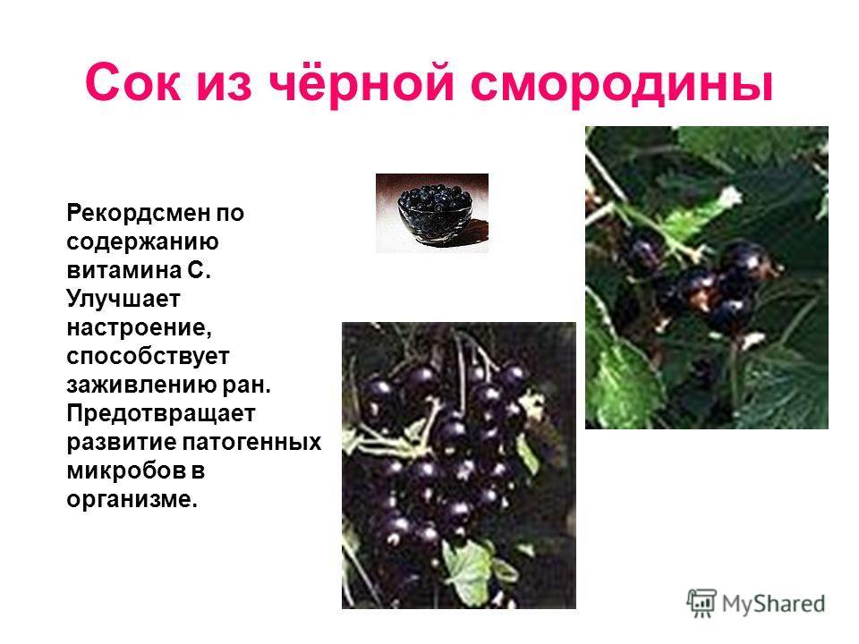 Сок из чёрной смородины Рекордсмен по содержанию витамина С. Улучшает настроение, способствует заживлению ран. Предотвращает развитие патогенных микробов в организме.