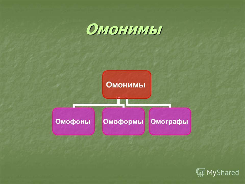 Омонимы Омонимы ОмофоныОмоформыОмографы