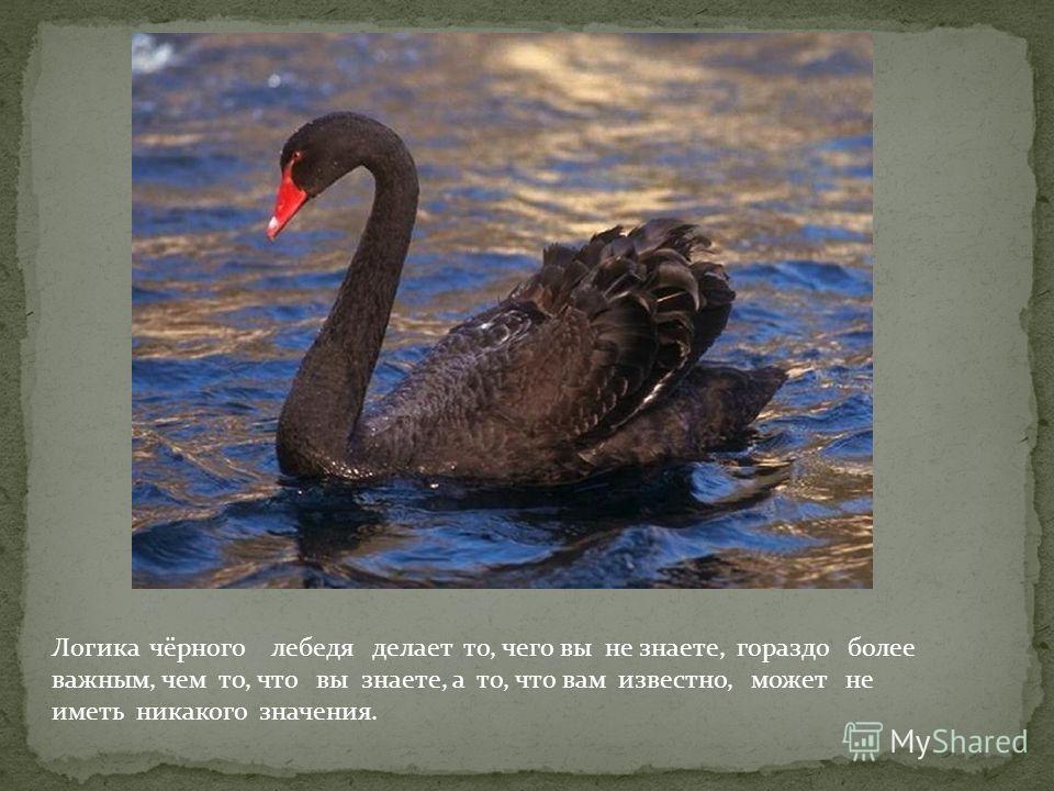 Логика чёрного лебедя делает то, чего вы не знаете, гораздо более важным, чем то, что вы знаете, а то, что вам известно, может не иметь никакого значения.