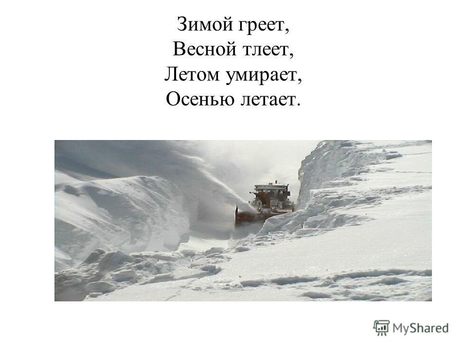 Зимой греет, Весной тлеет, Летом умирает, Осенью летает.