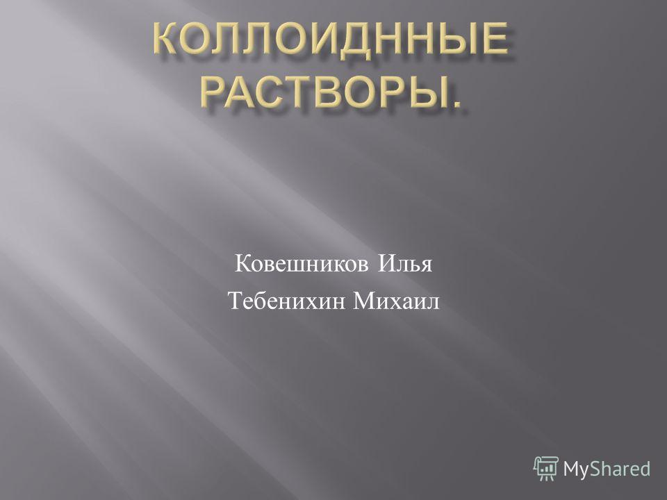 Ковешников Илья Тебенихин Михаил
