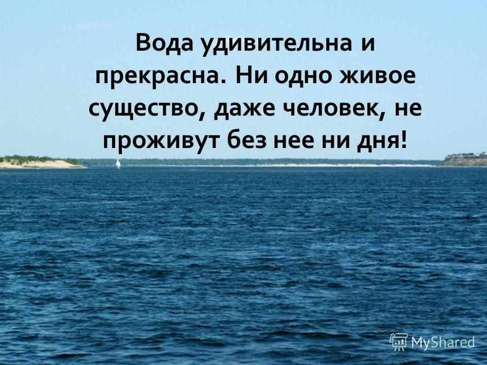 Вода удивительна и прекрасна. Ни одно живое существо, даже человек, не проживут без нее ни дня!