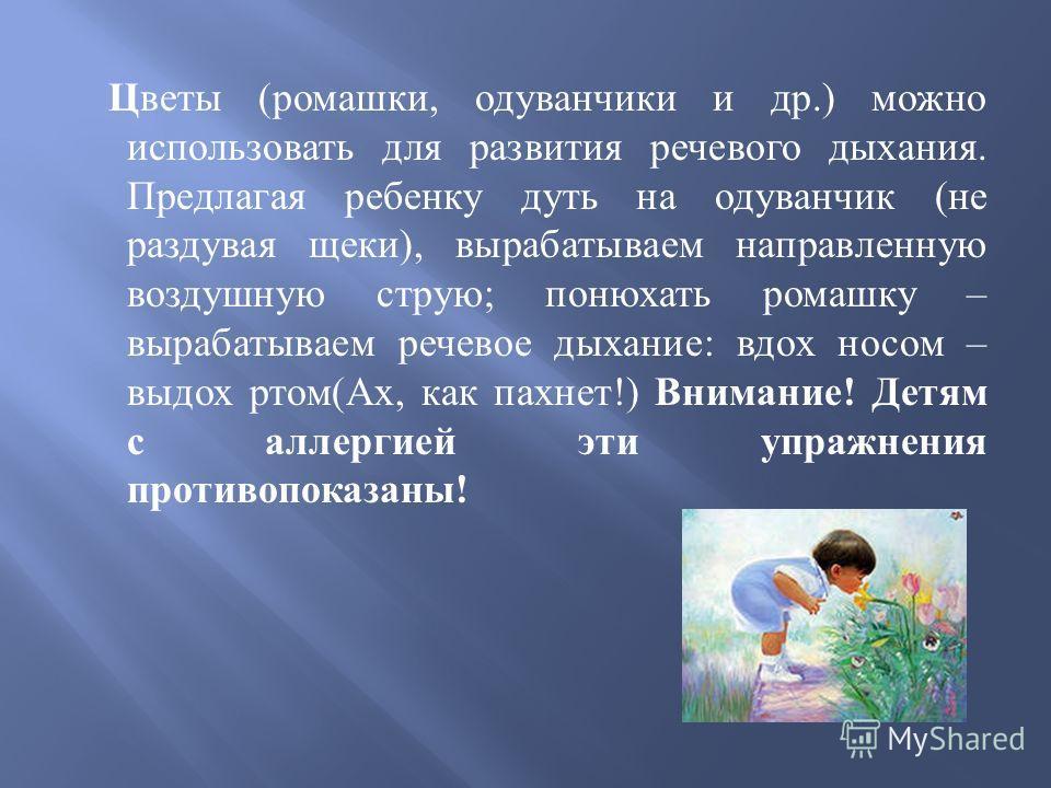 Цветы ( ромашки, одуванчики и др.) можно использовать для развития речевого дыхания. Предлагая ребенку дуть на одуванчик ( не раздувая щеки ), вырабатываем направленную воздушную струю ; понюхать ромашку – вырабатываем речевое дыхание : вдох носом –