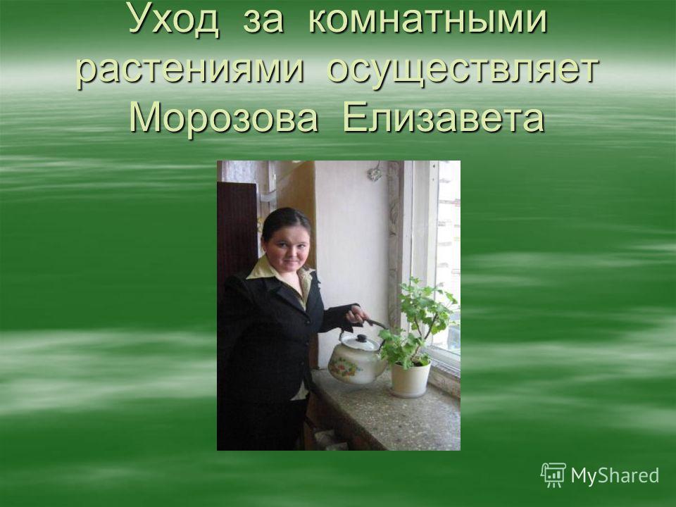 Уход за комнатными растениями осуществляет Морозова Елизавета
