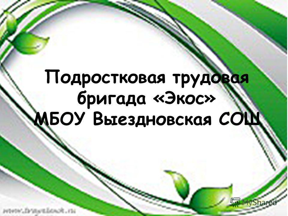 Подростковая трудовая бригада «Экос» МБОУ Выездновская СОШ