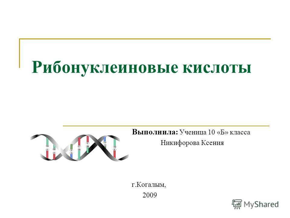 Рибонуклеиновые кислоты Выполнила: Ученица 10 «Б» класса Никифорова Ксения г.Когалым, 2009