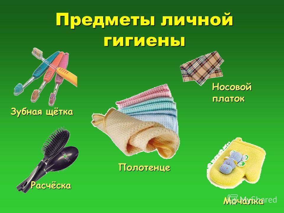 Предметы личной гигиены Зубная щётка Расчёска Полотенце Мочалка Носовой платок