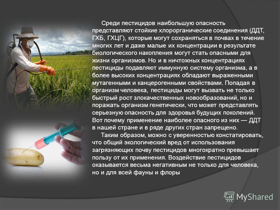 Среди пестицидов наибольшую опасность представляют стойкие хлорорганические соединения (ДДТ, ГХБ, ГХЦГ), которые могут сохраняться в почвах в течение многих лет и даже малые их концентрации в результате биологического накопления могут стать опасными